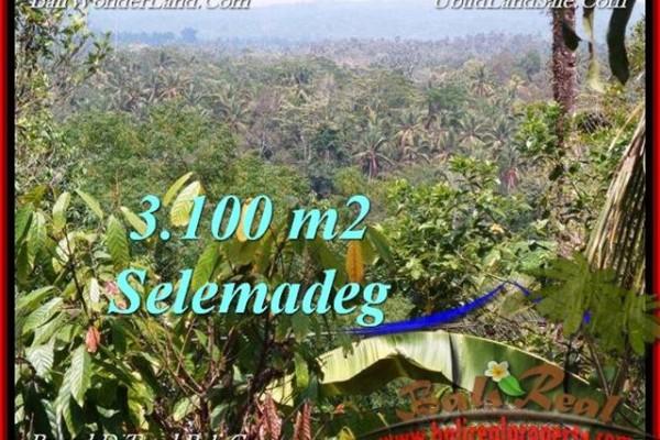 TANAH MURAH JUAL di TABANAN BALI 31 Are View kebun, sawah