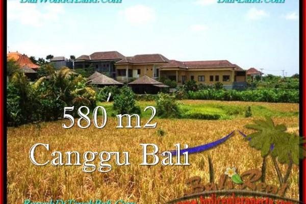 TANAH MURAH di CANGGU BALI 5.8 Are View sawah, lingkungan villa