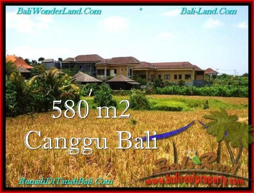 DIJUAL TANAH MURAH di CANGGU BALI 5.8 Are di Canggu Pererenan