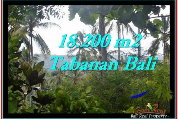 TANAH DIJUAL MURAH di TABANAN 18,200 m2 di Tabanan Selemadeg