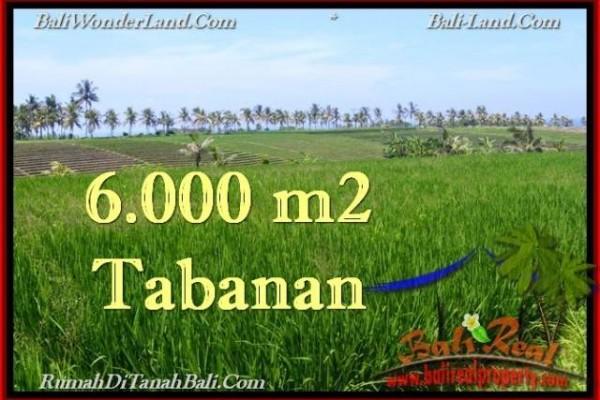 JUAL TANAH di TABANAN 6,000 m2  View Laut, Sawah dan Gunung