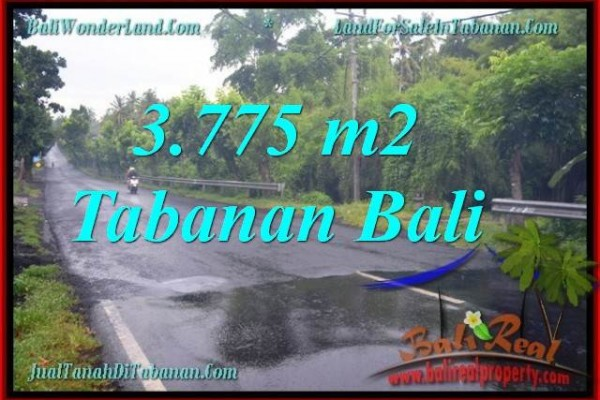 DIJUAL TANAH di TABANAN 37.75 Are di Tabanan Selemadeg