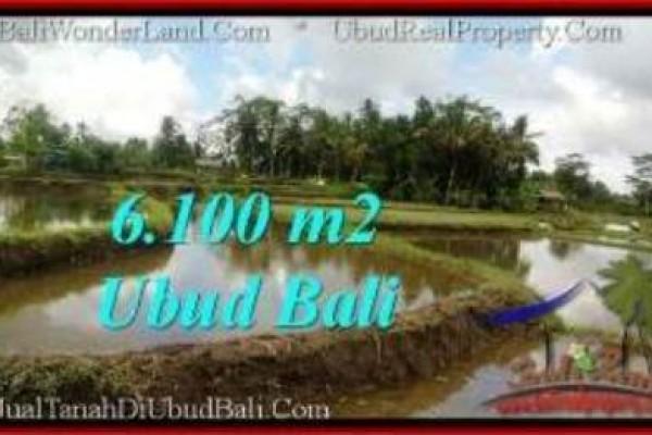 DIJUAL MURAH TANAH di UBUD Untuk INVESTASI TJUB547