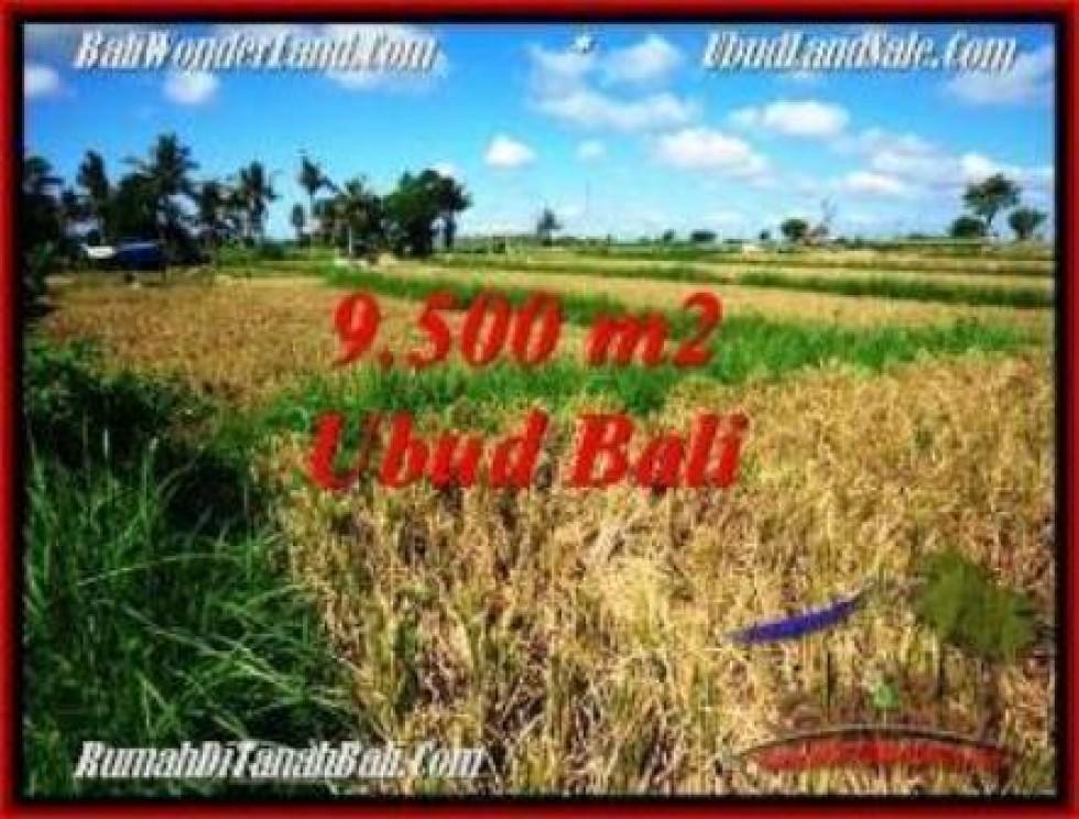 JUAL MURAH TANAH di UBUD BALI 95 Are di Sentral Ubud