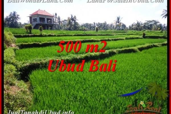 DIJUAL MURAH TANAH di UBUD BALI 5 Are di Sentral Ubud