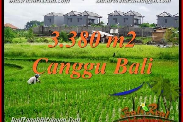 JUAL TANAH di CANGGU BALI 33.8 Are View sawah, lingkungan villa