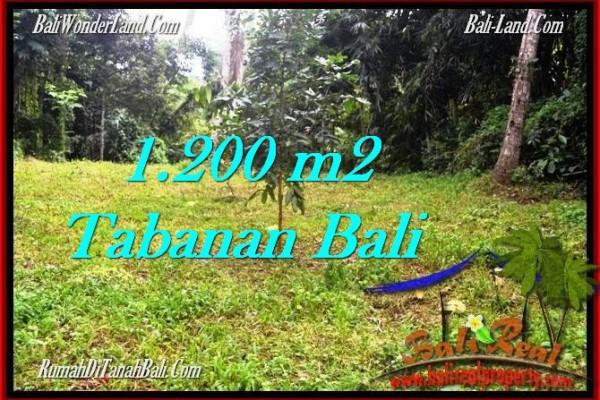 JUAL TANAH MURAH di TABANAN BALI 1,200 m2  View kebun