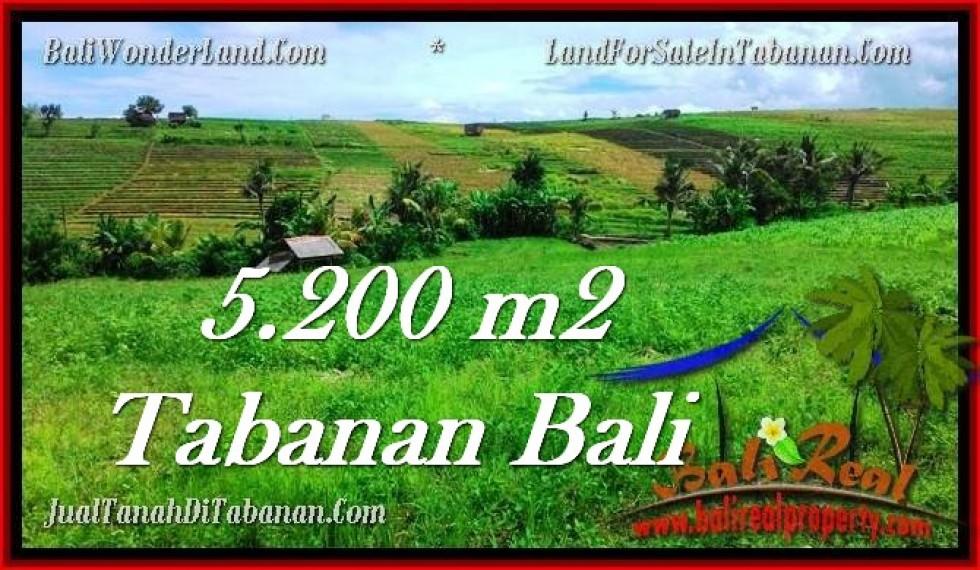 TANAH di TABANAN JUAL MURAH 52 Are View sawah dan sungai