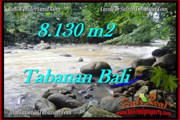 TANAH MURAH DIJUAL di TABANAN BALI 81.3 Are di Tabanan Selemadeg