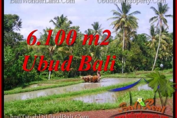 TANAH MURAH JUAL di UBUD BALI 6,100 m2  View Sawah lingkungan villa