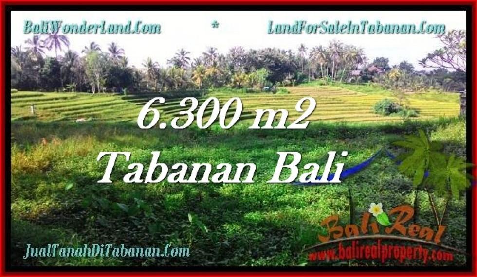 INVESTASI PROPERTI, DIJUAL TANAH di TABANAN TJTB275
