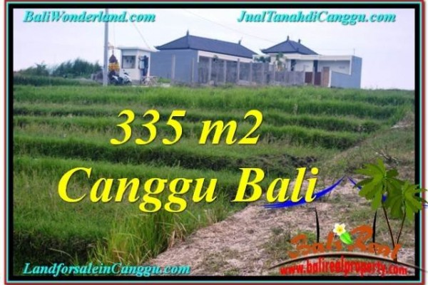JUAL TANAH MURAH di CANGGU 335 m2  View sawah, sungai, lingkungan villa