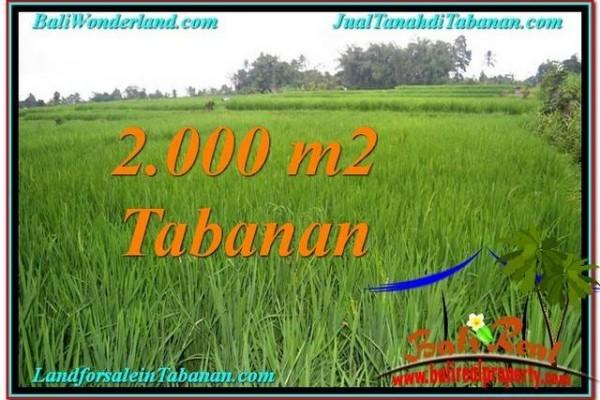 DIJUAL TANAH di TABANAN BALI 2,000 m2 di Tabanan Penebel