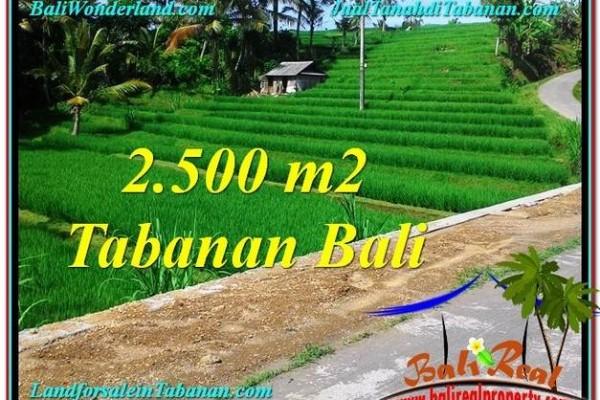 DIJUAL TANAH di TABANAN BALI Untuk INVESTASI TJTB305