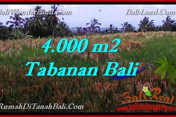 INVESTASI PROPERTY, JUAL TANAH MURAH di TABANAN BALI TJTB288