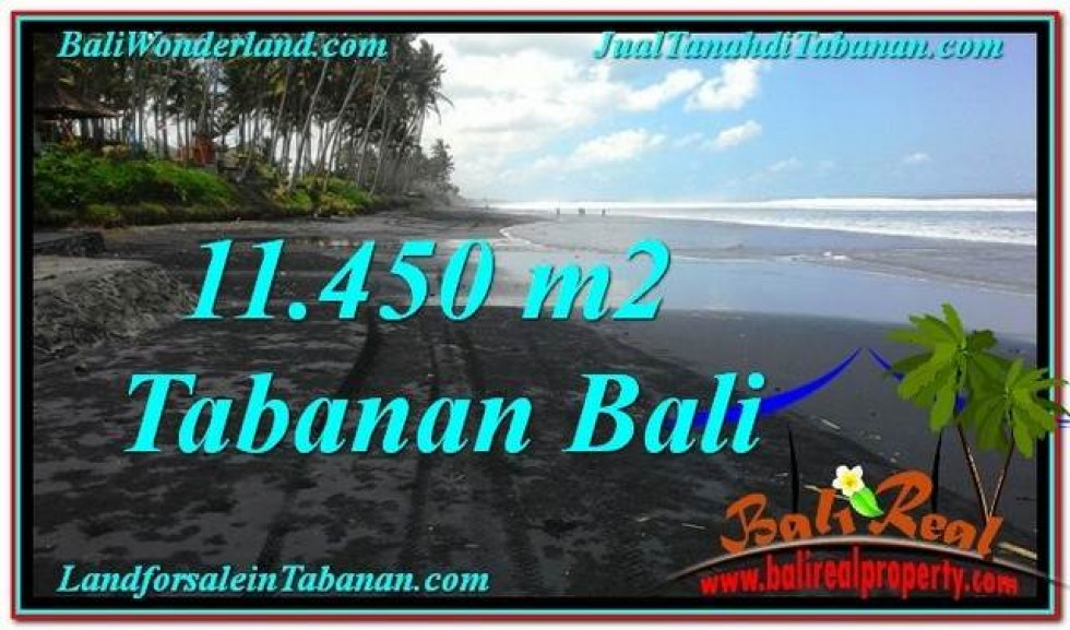 JUAL TANAH di TABANAN 114.5 Are View Laut, Gunung dan sawah
