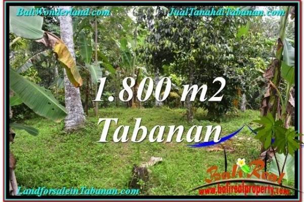 TANAH di TABANAN DIJUAL TJTB293