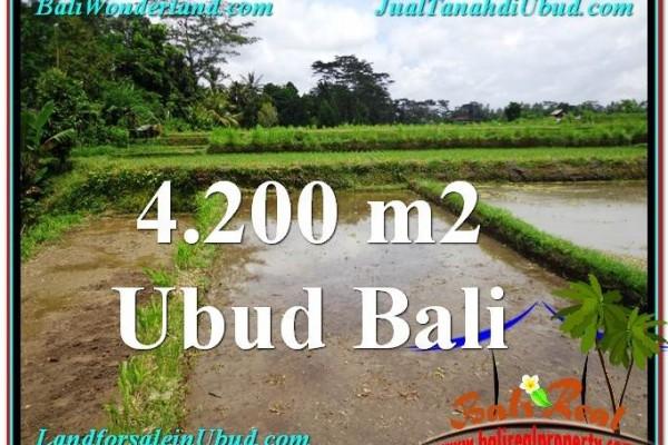 TANAH di UBUD JUAL MURAH 4,200 m2  View kebun dan sawah