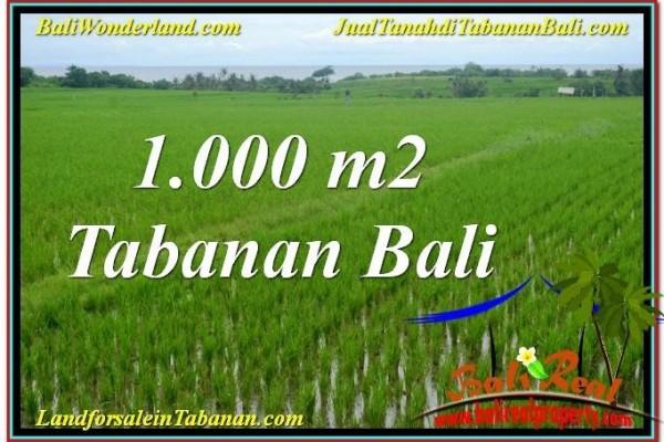 TANAH MURAH DIJUAL di TABANAN BALI 1,000 m2 di Tabanan Kerambitan
