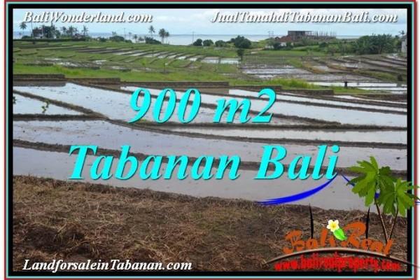 TANAH MURAH DIJUAL di TABANAN Untuk INVESTASI TJTB308
