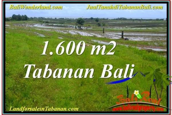 TANAH DIJUAL di TABANAN 1,600 m2  View Laut, Gunung dan sawah