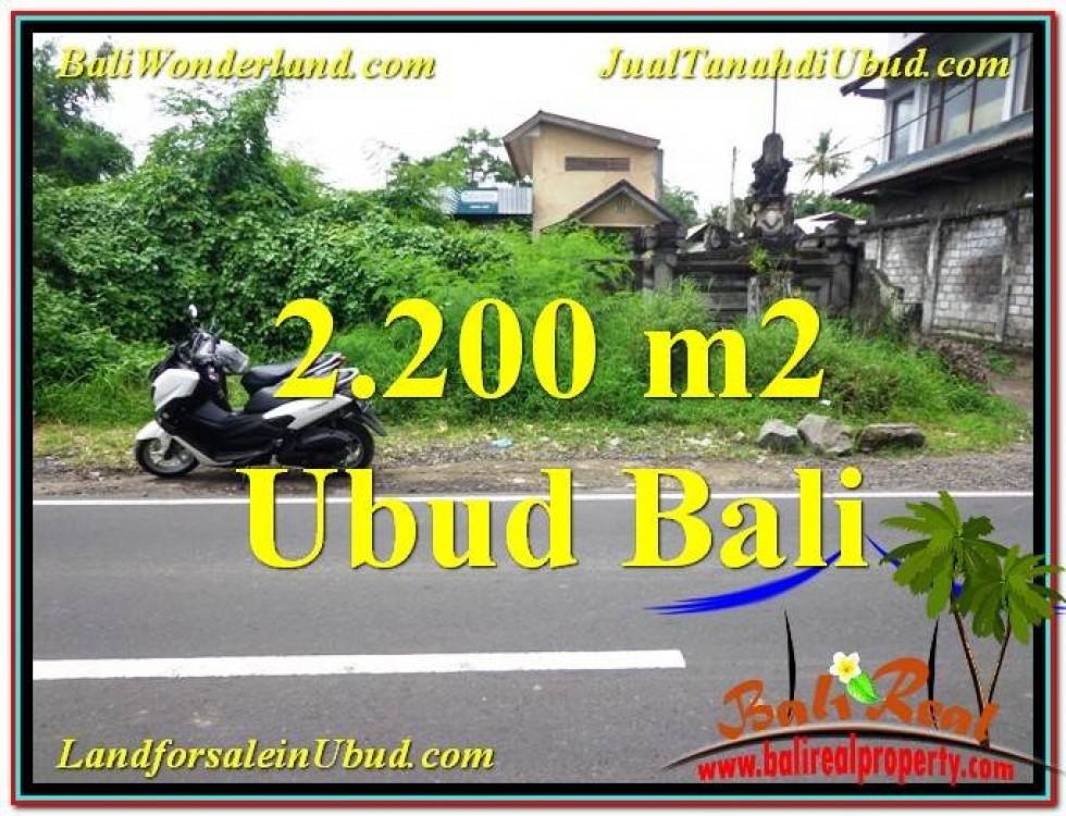 JUAL TANAH di UBUD BALI 22 Are Pinggir Jalan Raya