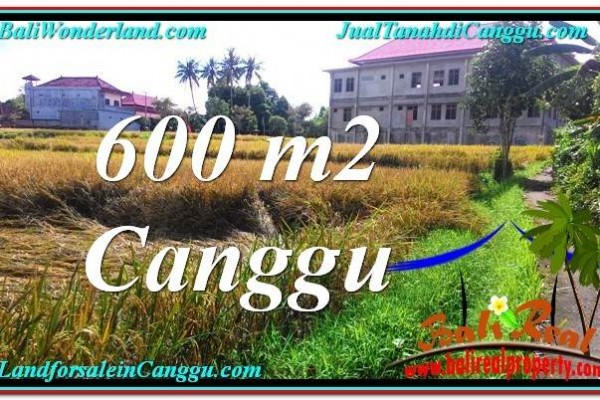 TANAH DIJUAL di CANGGU BALI 600 m2  View sawah lingkungan villa