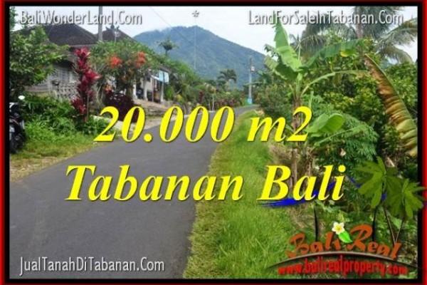 JUAL MURAH TANAH di TABANAN BALI 20,000 m2  View gunung dan sawah