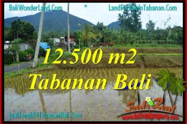 TANAH di TABANAN DIJUAL MURAH 12,500 m2 di Tabanan Penebel