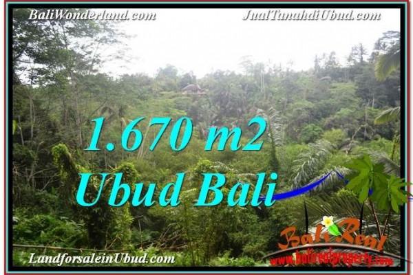JUAL MURAH TANAH di UBUD BALI 16.7 Are View Tebing