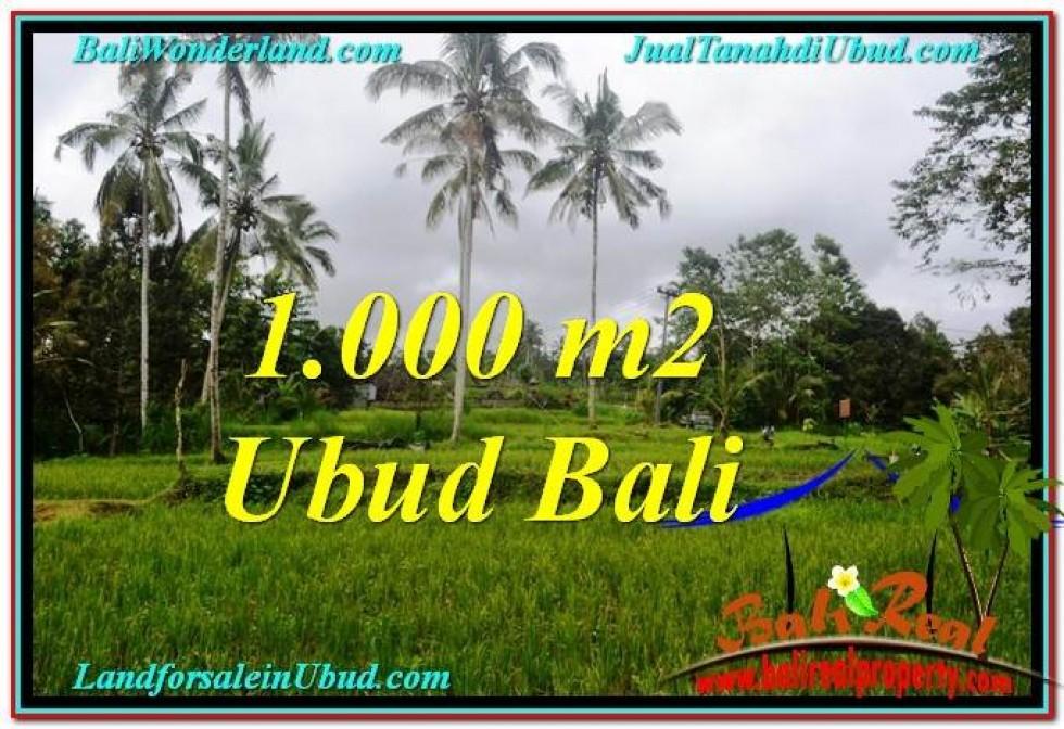 TANAH di UBUD DIJUAL Untuk INVESTASI TJUB570