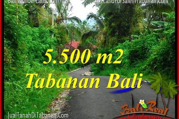 TANAH DIJUAL di TABANAN 55 Are View Laut dan Gunung