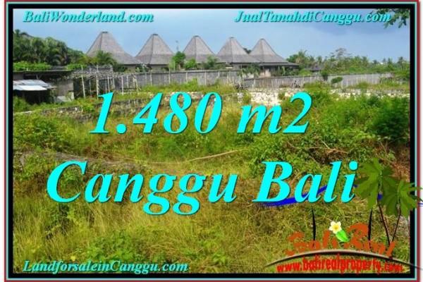 JUAL TANAH di CANGGU 1,480 m2 di Canggu Pererenan