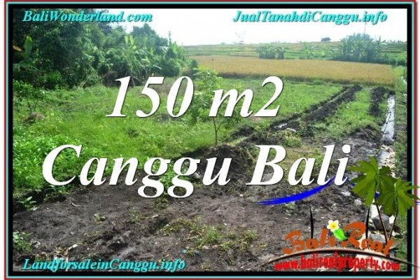 TANAH DIJUAL di CANGGU BALI Untuk INVESTASI TJCG213