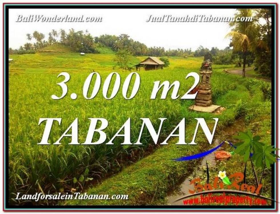TANAH MURAH  di TABANAN BALI DIJUAL 3,000 m2  View gunung dan sawah