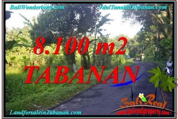 TANAH DIJUAL di TABANAN BALI 81 Are di Tabanan Marga