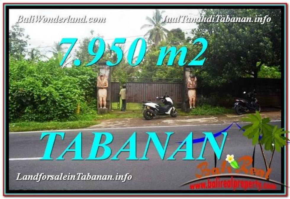 TANAH MURAH JUAL di TABANAN BALI 7,950 m2  View Kebun