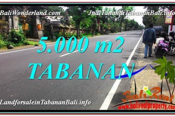 TANAH MURAH DIJUAL di TABANAN BALI 5,000 m2 di Badung