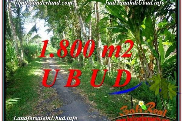 TANAH di UBUD DIJUAL MURAH 1,800 m2 di Ubud Payangan