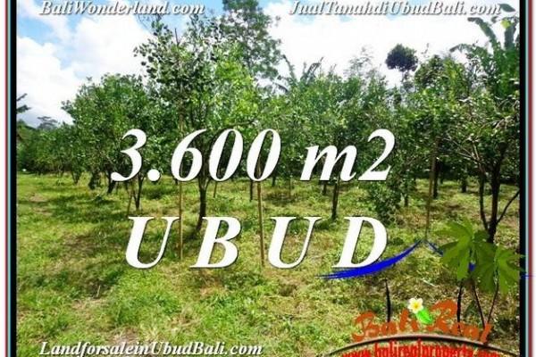 DIJUAL MURAH TANAH di UBUD BALI Untuk INVESTASI TJUB599