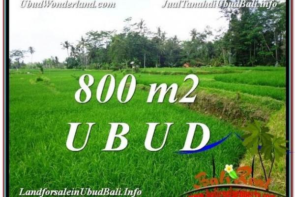 JUAL TANAH MURAH di UBUD TJUB581
