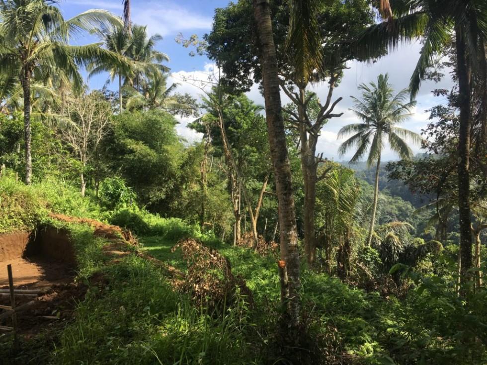 Tanah Dijual Murah di Teras Ayung Ubud dengan View Sungai