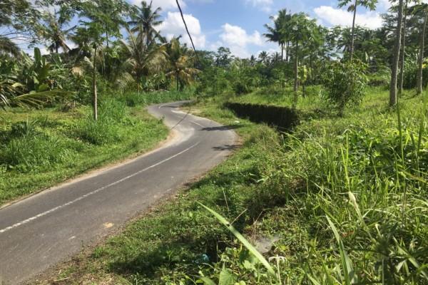 Tanah Cantik Dijual Murah di Teras Ayung Ubud cocok untuk Villa