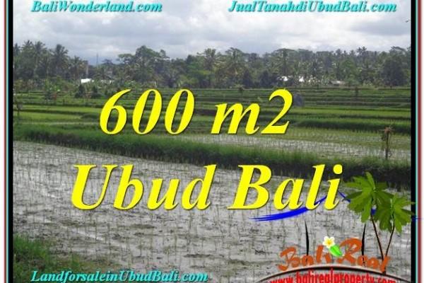 TANAH di UBUD BALI DIJUAL MURAH 600 m2 di Ubud Tegalalang