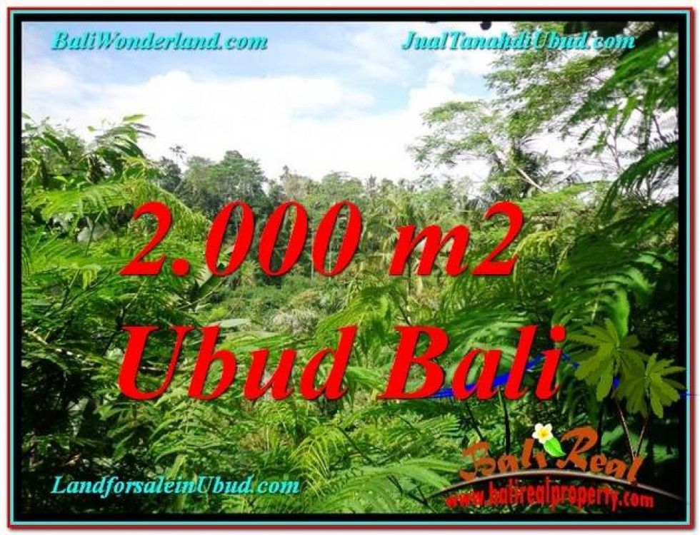 TANAH di UBUD JUAL MURAH 2,000 m2  View Tebing lingkungan Villa