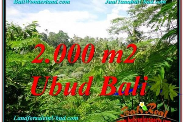 INVESTASI PROPERTY, JUAL TANAH MURAH di UBUD TJUB611