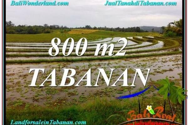 TANAH di TABANAN BALI DIJUAL 800 m2 View laut dan sawah