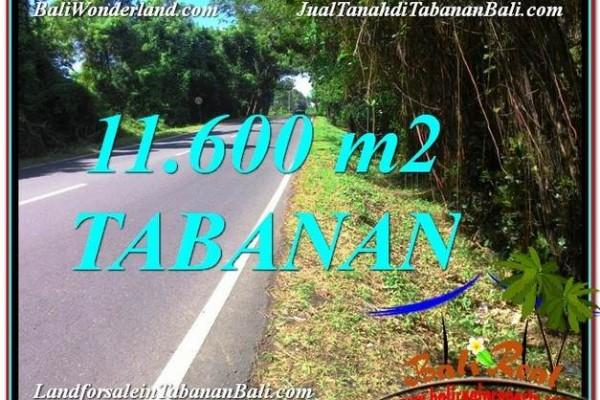 JUAL TANAH MURAH di TABANAN BALI 116 Are View laut dan Lingkungan Villa