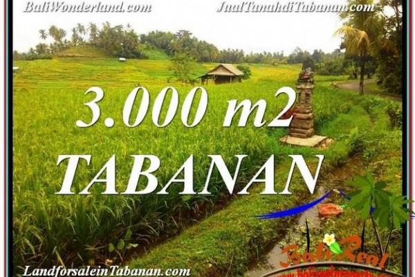JUAL TANAH di TABANAN 3,000 m2  View gunung dan sawah