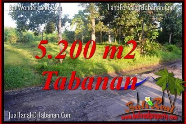 TANAH MURAH di TABANAN JUAL 52 Are View Kebun dan Sungai